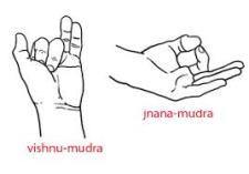 Mudras-for-Nadi-Shodona-1